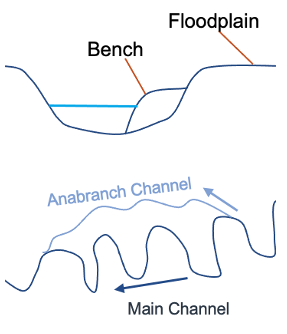 Bench and Floodplain Diagram